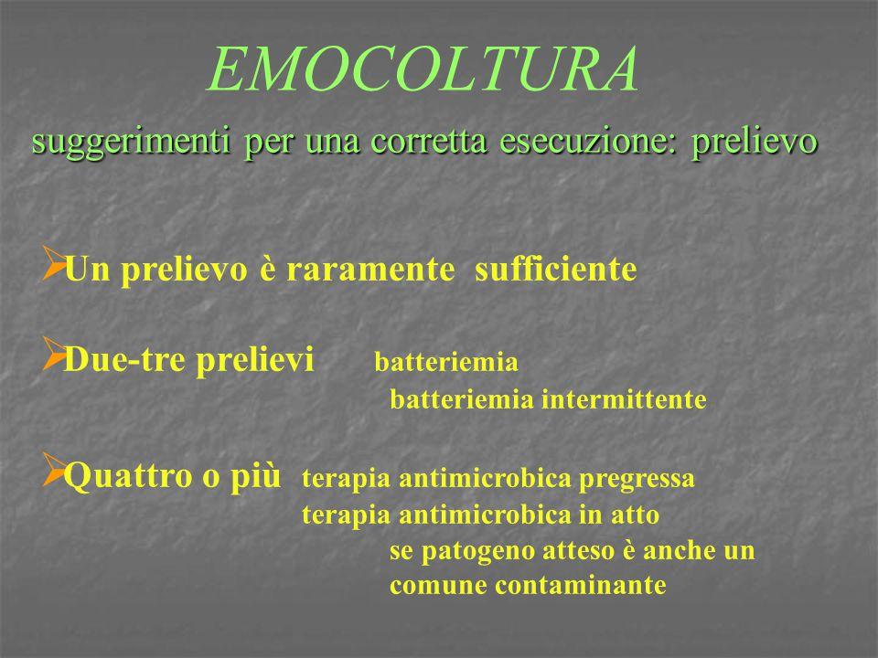 S.pneumoniae oxacillina > 20 mmS oxacillina > 20 mmS sensibilità a penicillina sensibilità a betalattamici (am, amc, fep, ctx, cro, ipm, mem ) sensibilità a penicillina sensibilità a betalattamici (am, amc, fep, ctx, cro, ipm, mem ) oxacillina <19mm MIC oxacillina <19mm MIC P CRO-CTX MEM