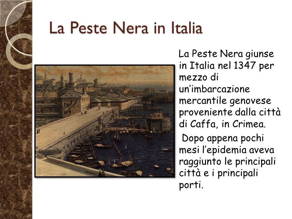 La Peste Nera in Italia La Peste Nera giunse in Italia nel 1347 per mezzo di un'imbarcazione mercantile genovese proveniente dalla città di Caffa, in Crimea.