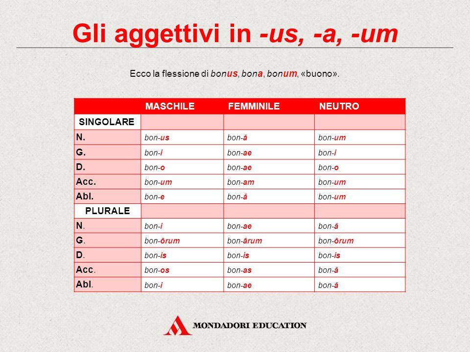 Le due classi degli aggettivi Gli aggettivi latini si flettono come i sostativi e, a seconda del modello di declinazione che seguono, si dividono in d