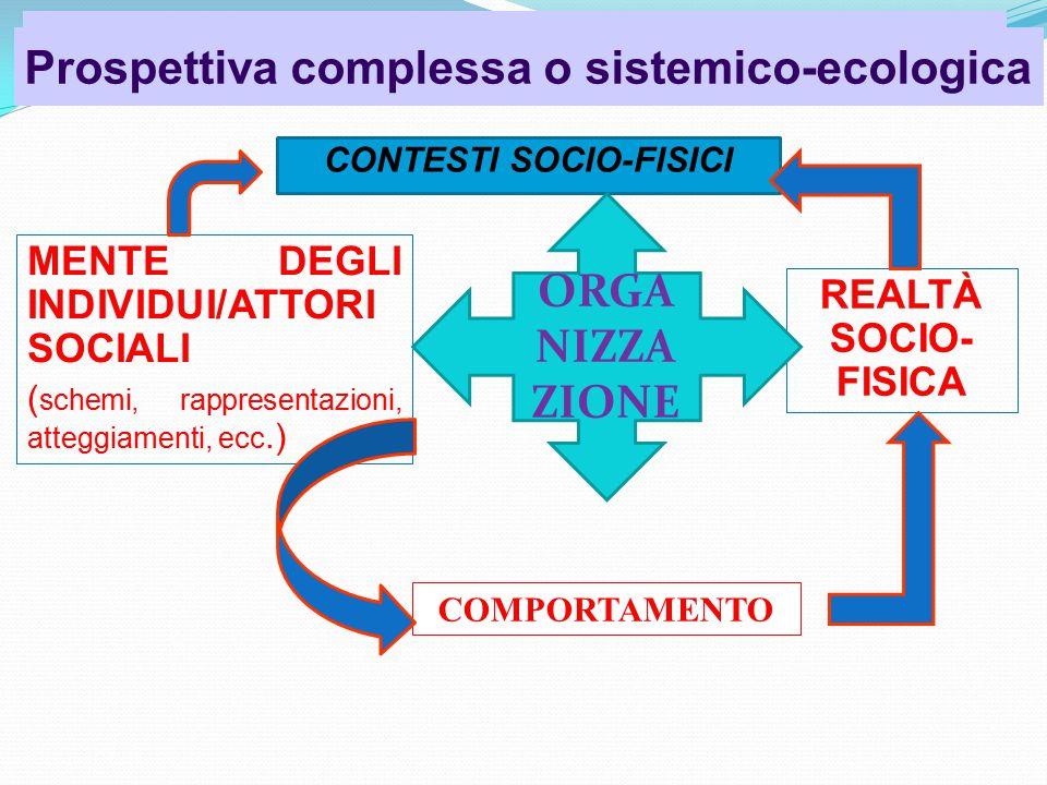 CONTESTI SOCIO-FISICI Psicologia dell'organizzazione Prospettiva complessa o sistemico-ecologica MENTE DEGLI INDIVIDUI/ATTORI SOCIALI ( schemi, rappresentazioni, atteggiamenti, ecc.) REALTÀ SOCIO- FISICA COMPORTAMENTO ORGA NIZZA ZIONE