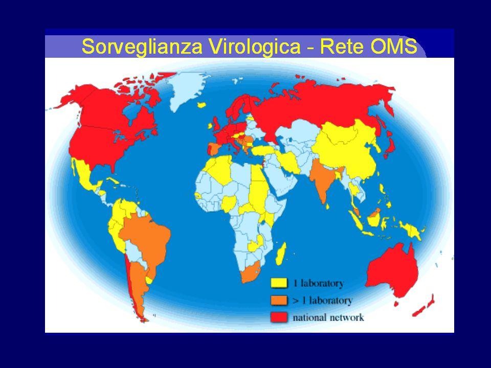 Componenti –5 Centri Collaboratori OMS –112 Laboratori Nazionali Influenza in 83 Nazioni, e vari altri laboratori Obiettivo –Raccomandare due volte l'anno la composizione del vaccino antinfluenzale per la stagione successiva.