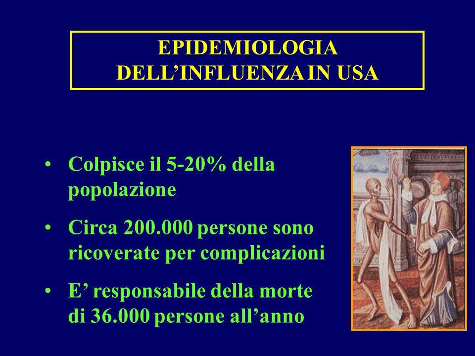 EPIDEMIOLOGIA DELL'INFLUENZA IN USA Colpisce il 5-20% della popolazione Circa 200.000 persone sono ricoverate per complicazioni E' responsabile della