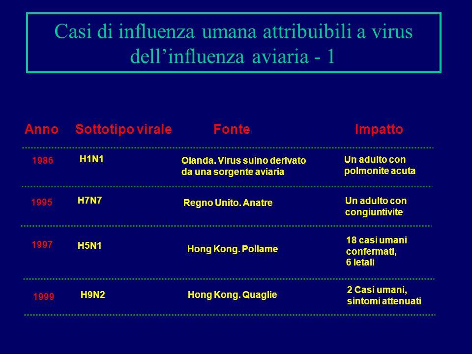 Casi di influenza umana attribuibili a virus dell'influenza aviaria - 1 Anno Sottotipo virale FonteImpatto 1986 H1N1 Olanda. Virus suino derivato da u