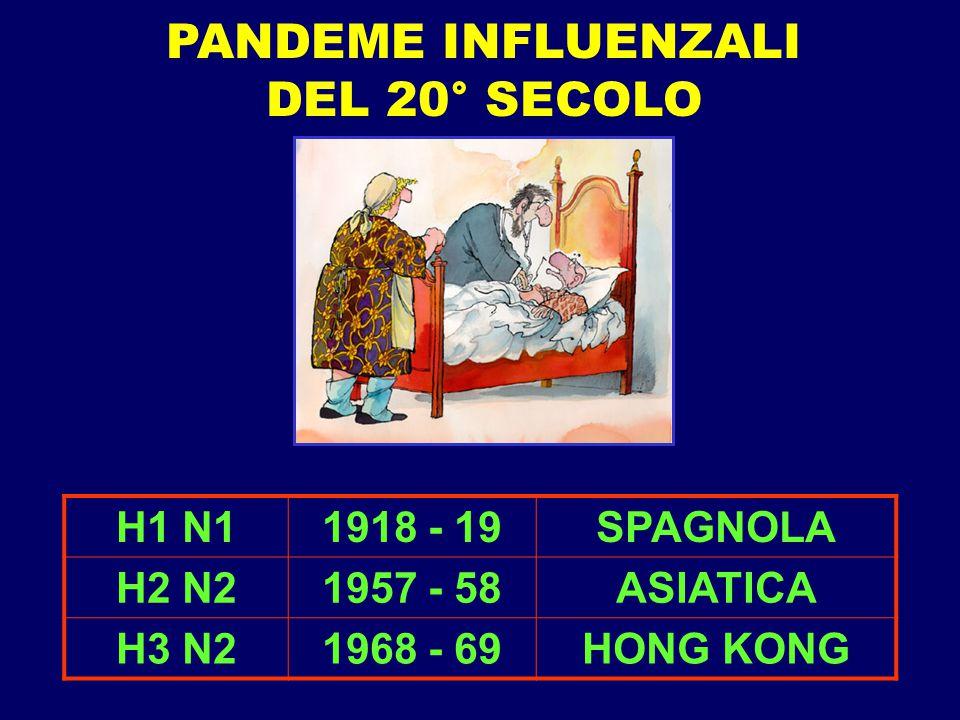 H1 N11918 - 19SPAGNOLA H2 N21957 - 58ASIATICA H3 N21968 - 69HONG KONG PANDEME INFLUENZALI DEL 20° SECOLO