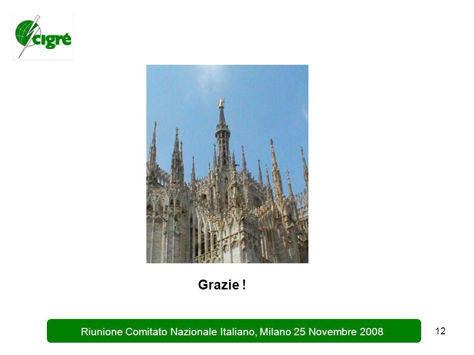 12 Riunione Comitato Nazionale Italiano, Milano 25 Novembre 2008 Grazie !