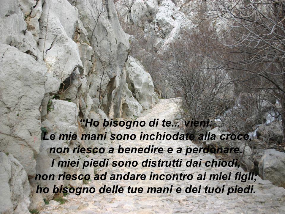 """""""Ho bisogno di te... vieni: Le mie mani sono inchiodate alla croce, non riesco a benedire e a perdonare. I miei piedi sono distrutti dai chiodi, non r"""
