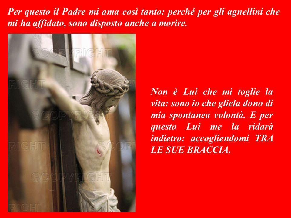 Io invece sono un buon pastore: amo le mie pecore e loro amano me, così come il Padre ama me ed io amo il Padre. Ed amo anche le pecorelle che fanno p