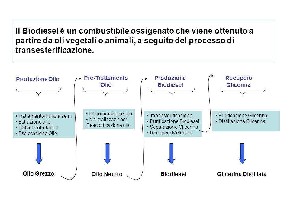 Le specifiche internazionali identificano tre tipi di biodiesel: RME (esteri metilici dell olio di colza - DIN E 51606) PME (esteri metilici di soli oli vegetali - DIN E 51606) FME (esteri metilici di grassi vegetali e animali - DIN V 51606) Le specifiche fissano inoltre alcuni punti importanti nei processi di produzione: completezza della reazione rimozione del glicerolo rimozione del catalizzatore rimozione degli alcoli assenza di acidi grassi liberi La conformità a queste caratteristiche viene generalmente verificata tramite gascromatografia