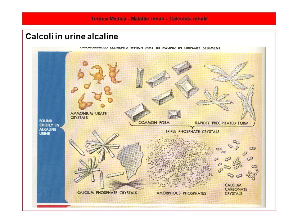 Terapia Medica - Malattie renali – Calcolosi renale Calcoli in urine alcaline