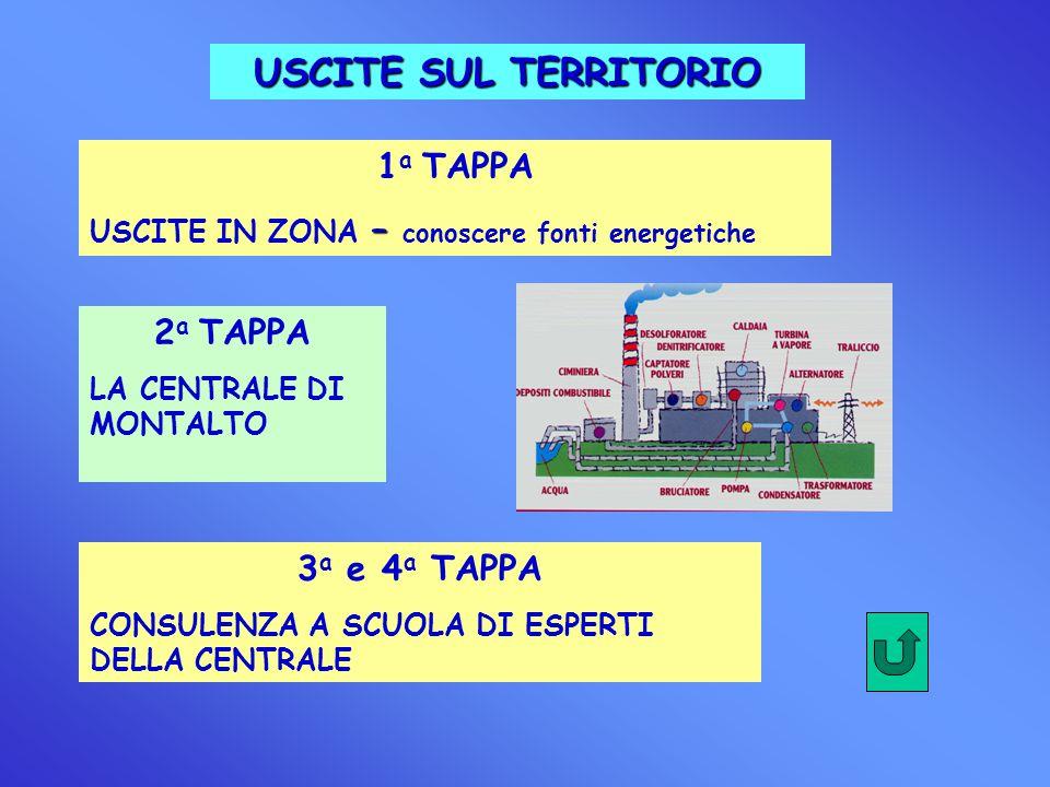 USCITE SUL TERRITORIO 1 a TAPPA USCITE IN ZONA – conoscere fonti energetiche 2 a TAPPA LA CENTRALE DI MONTALTO 3 a e 4 a TAPPA CONSULENZA A SCUOLA DI ESPERTI DELLA CENTRALE