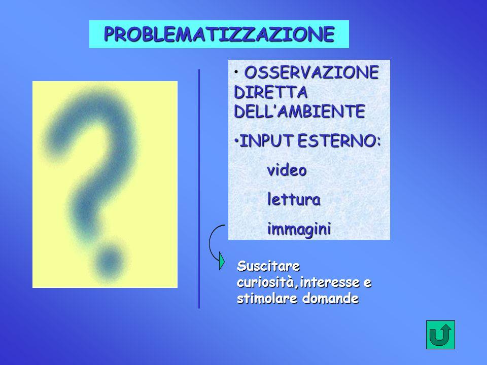 PROBLEMATIZZAZIONE OSSERVAZIONE DIRETTA DELL'AMBIENTE INPUTINPUT ESTERNO: video lettura immagini Suscitare curiosità,interesse e stimolare domande