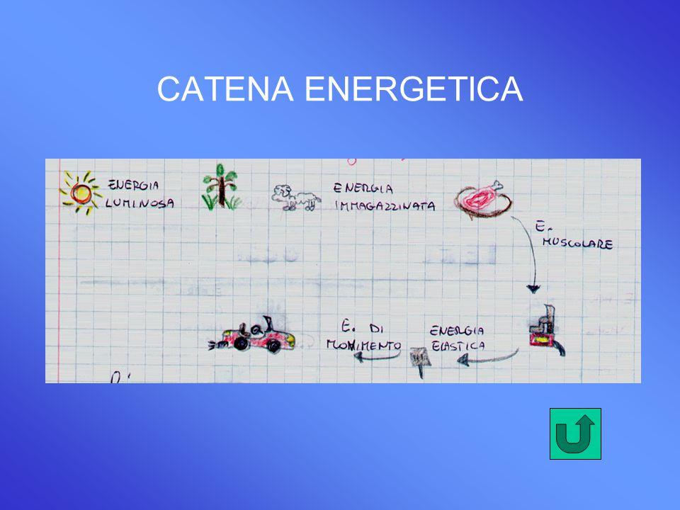 CATENA ENERGETICA