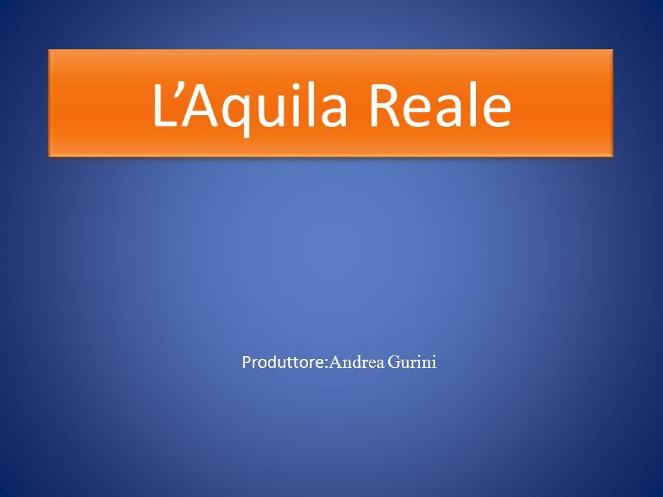Produttore: Andrea Gurini