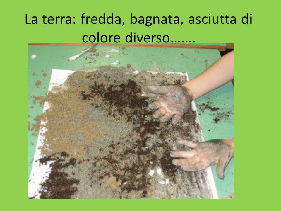 La terra: fredda, bagnata, asciutta di colore diverso…….
