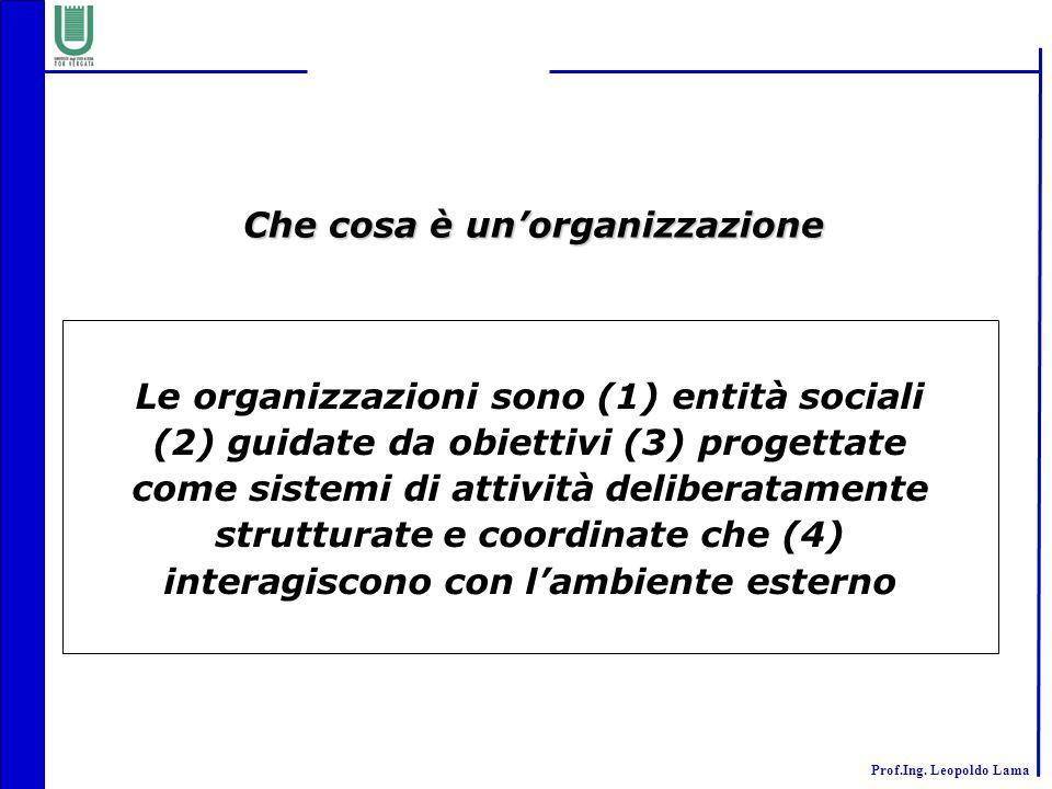 Prof.Ing. Leopoldo Lama Le organizzazioni sono (1) entità sociali (2) guidate da obiettivi (3) progettate come sistemi di attività deliberatamente str