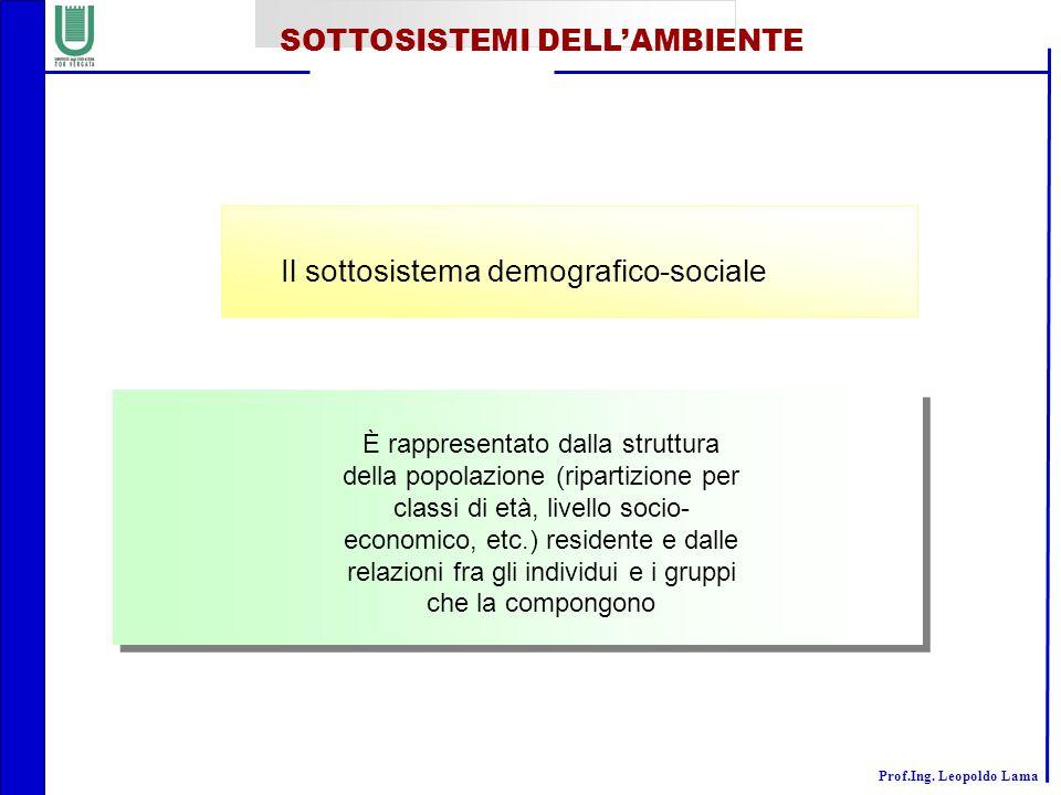 Prof.Ing. Leopoldo Lama Il sottosistema demografico-sociale È rappresentato dalla struttura della popolazione (ripartizione per classi di età, livello