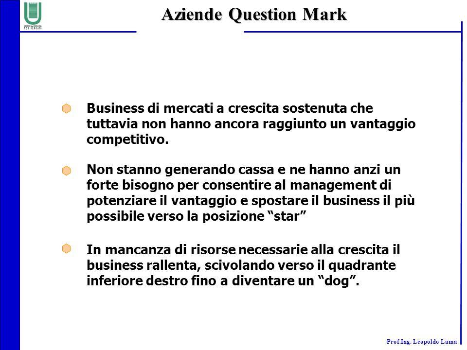 Prof.Ing. Leopoldo Lama Business di mercati a crescita sostenuta che tuttavia non hanno ancora raggiunto un vantaggio competitivo. Non stanno generand