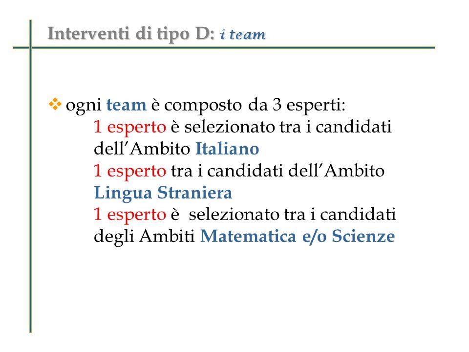  ogni team è composto da 3 esperti: 1 esperto è selezionato tra i candidati dell'Ambito Italiano 1 esperto tra i candidati dell'Ambito Lingua Straniera 1 esperto è selezionato tra i candidati degli Ambiti Matematica e/o Scienze Interventi di tipo D: i team