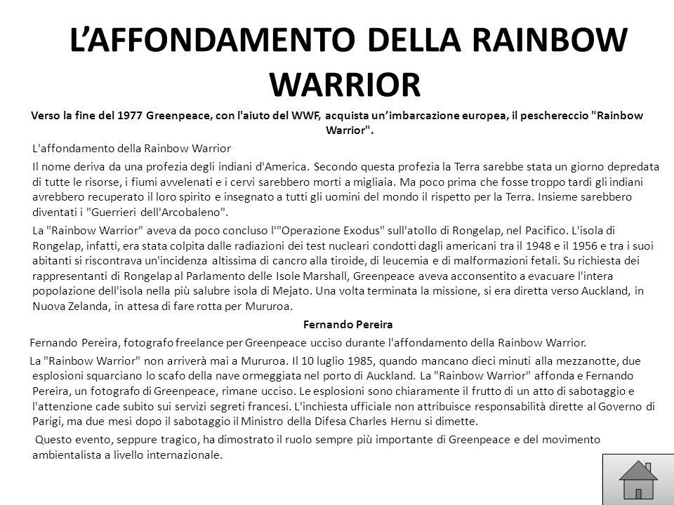 L'AFFONDAMENTO DELLA RAINBOW WARRIOR Verso la fine del 1977 Greenpeace, con l'aiuto del WWF, acquista un'imbarcazione europea, il peschereccio