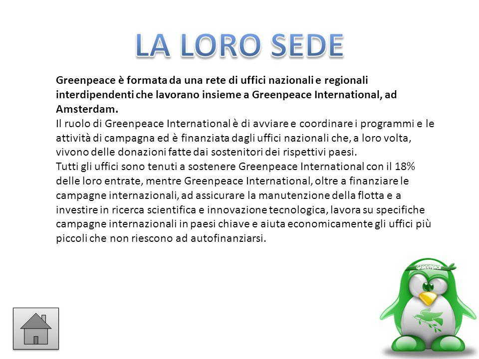 Greenpeace è formata da una rete di uffici nazionali e regionali interdipendenti che lavorano insieme a Greenpeace International, ad Amsterdam. Il ruo