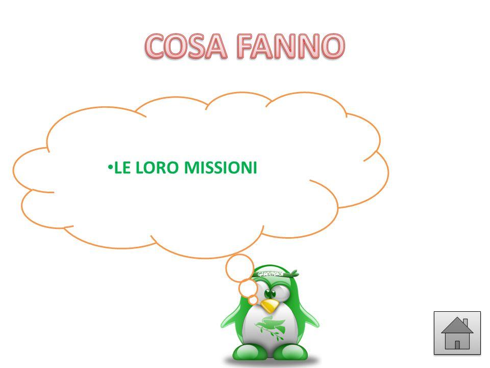 LE LORO MISSIONI
