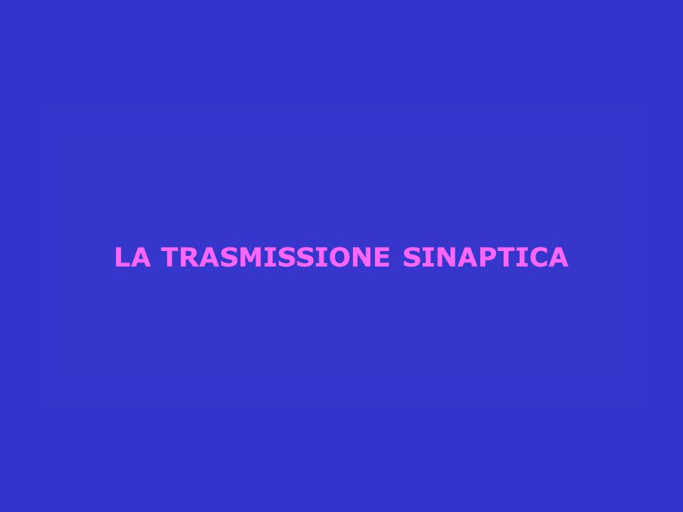 LA TRASMISSIONE SINAPTICA