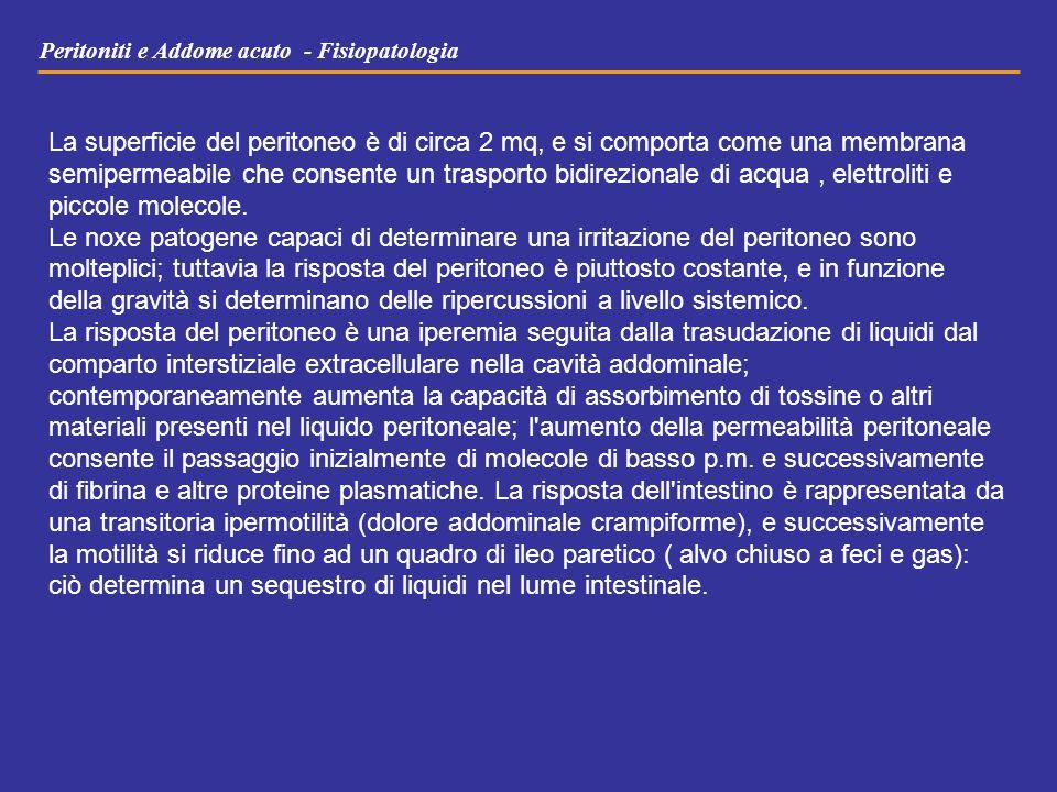 Peritoniti e Addome acuto - Fisiopatologia La superficie del peritoneo è di circa 2 mq, e si comporta come una membrana semipermeabile che consente un