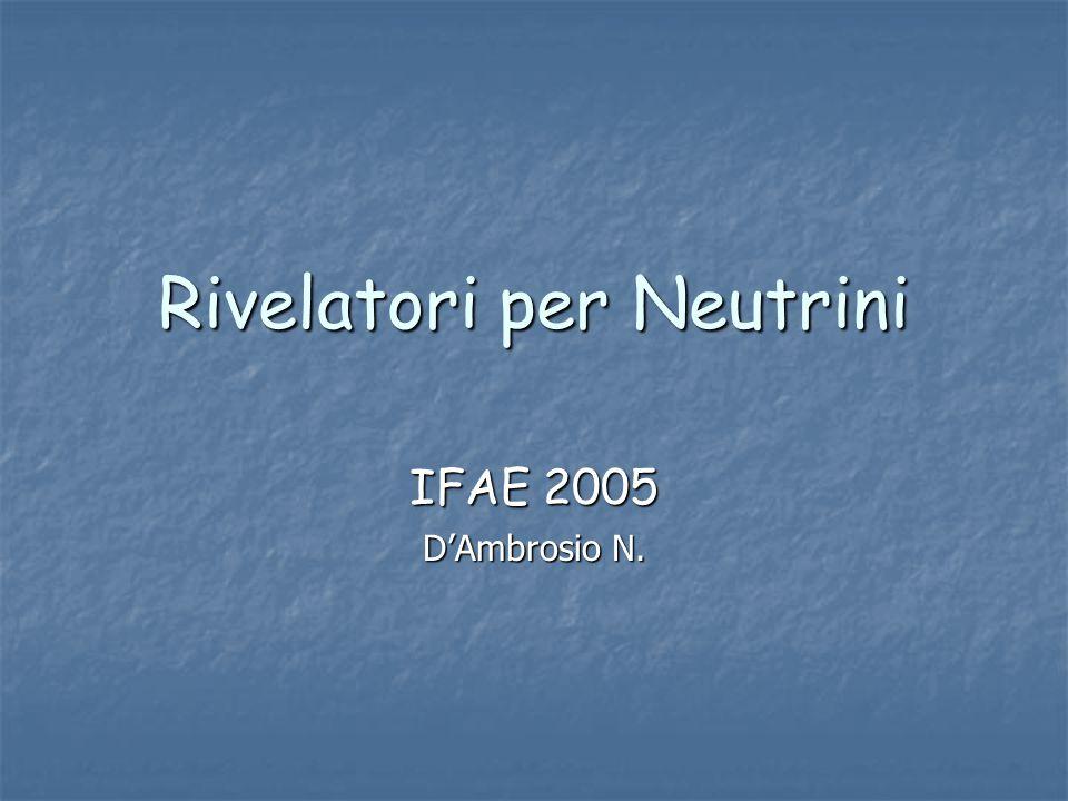 Rivelatori per Neutrini IFAE 2005 D'Ambrosio N.