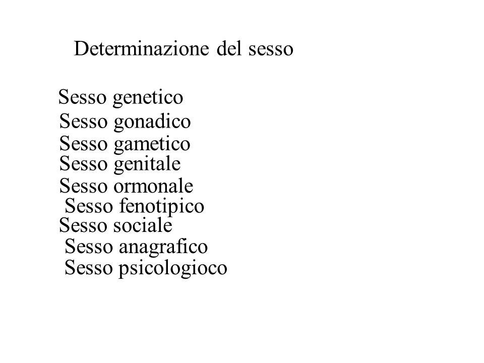 Determinazione del sesso Sesso genetico Sesso gonadico Sesso gametico Sesso genitale Sesso ormonale Sesso fenotipico Sesso sociale Sesso anagrafico Se