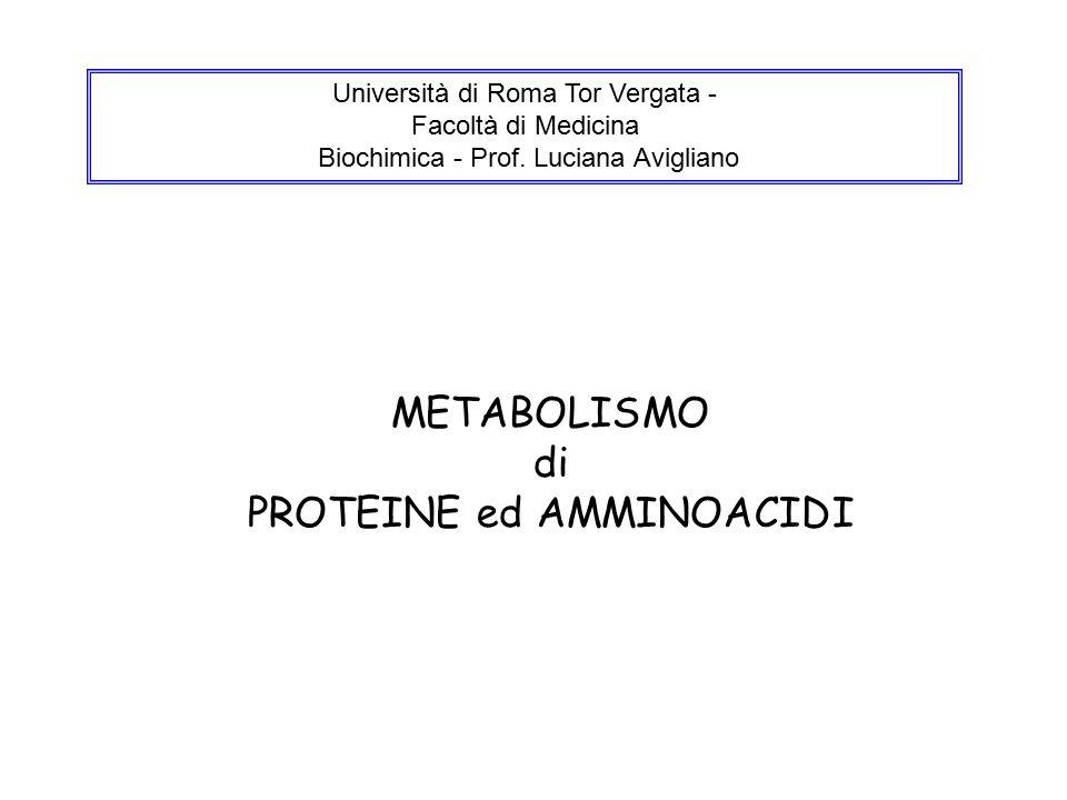METABOLISMO di PROTEINE ed AMMINOACIDI Università di Roma Tor Vergata - Facoltà di Medicina Biochimica - Prof.