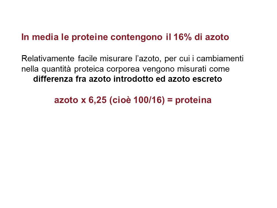 In media le proteine contengono il 16% di azoto Relativamente facile misurare l'azoto, per cui i cambiamenti nella quantità proteica corporea vengono misurati come differenza fra azoto introdotto ed azoto escreto azoto x 6,25 (cioè 100/16) = proteina