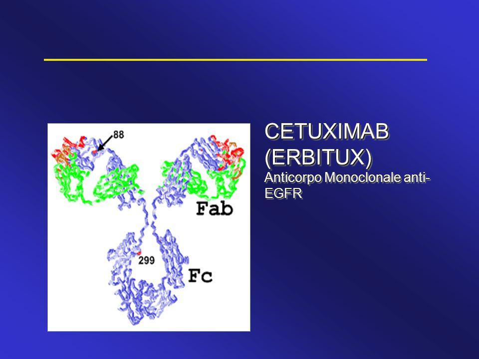Frequenza di mutazioni di k-ras, b-raf e p53 simile a quella riportata in letteratura Pazienti con mutazioni in k-ras e/o b-raf hanno una prognosi peggiore, indipendentente dal trattamento La terapia con Avastin ha un impatto sulla sopravvivenza indipendente dallo stato delle mutazioni di k-ras, b-raf o p53, e dall ' espressione di p53 o VEGF IFL ± Avastin: analisi sui determinanti molecolari Koeppen H, et al.