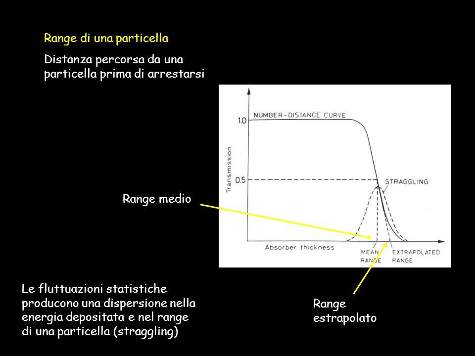 Range di una particella Distanza percorsa da una particella prima di arrestarsi Range medio Range estrapolato Le fluttuazioni statistiche producono una dispersione nella energia depositata e nel range di una particella (straggling)