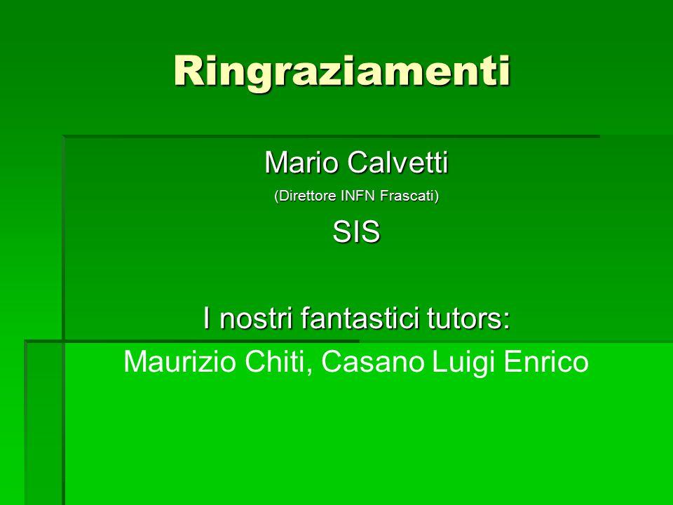 Ringraziamenti Mario Calvetti (Direttore INFN Frascati) SIS I nostri fantastici tutors: Maurizio Chiti, Casano Luigi Enrico