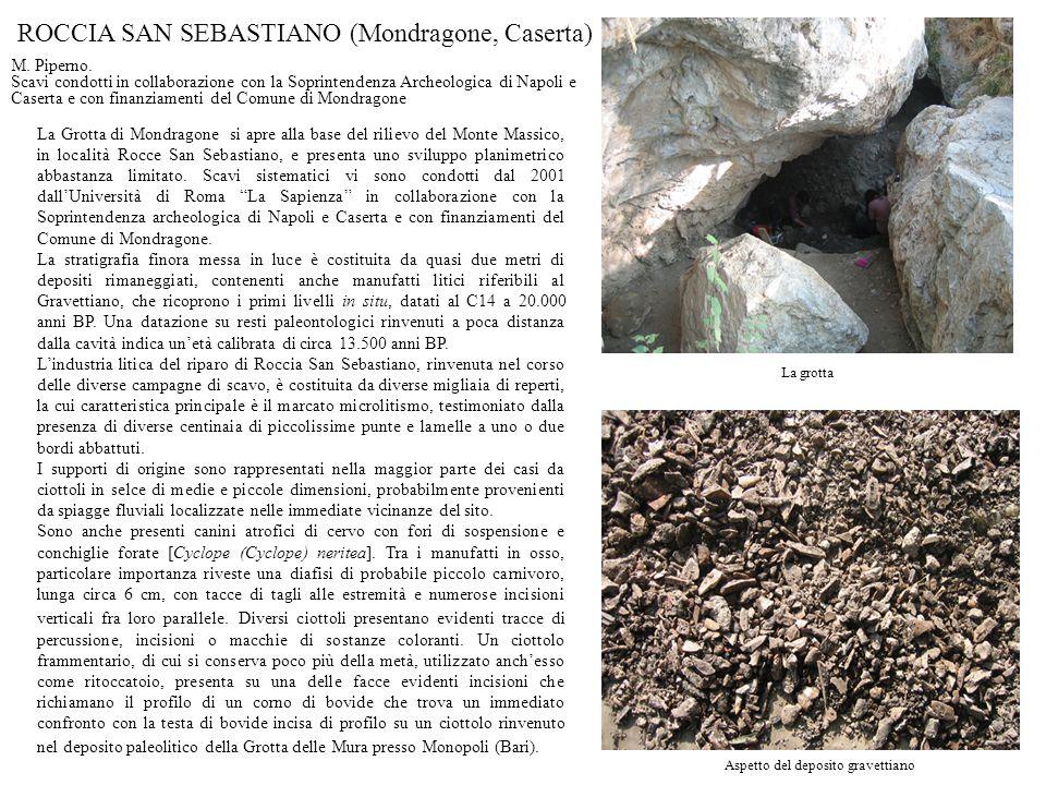 Aspetto del deposito gravettiano La grotta ROCCIA SAN SEBASTIANO (Mondragone, Caserta) La Grotta di Mondragone si apre alla base del rilievo del Monte