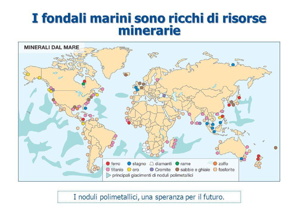 I fondali marini sono ricchi di risorse minerarie I noduli polimetallici, una speranza per il futuro.