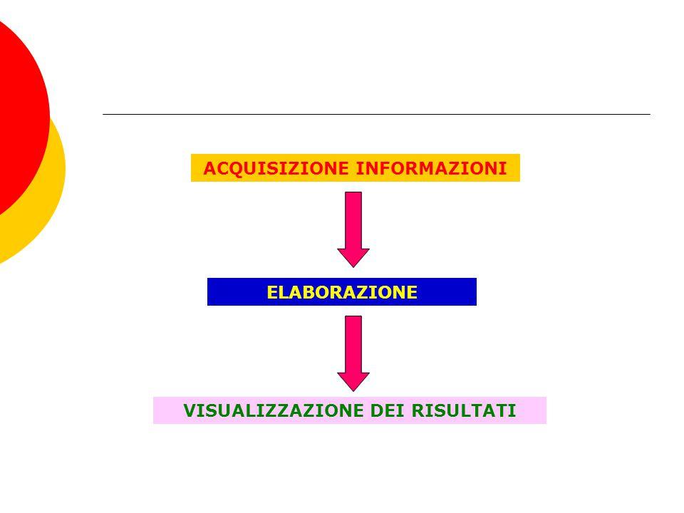 ACQUISIZIONE INFORMAZIONI ELABORAZIONE VISUALIZZAZIONE DEI RISULTATI