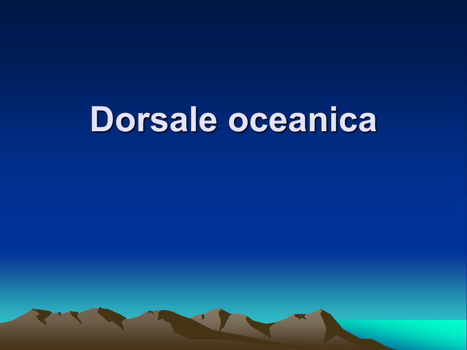 Una dorsale oceanica è il risultato della divergenza tra due placche di crosta oceanica.placchecrosta oceanica La litosfera nei pressi di tale crosta si assottiglia molto: è facile quindi che le due zolle, allontanandosi, facilitino la risalita di magma dall'astenosfera.litosferaastenosfera Infatti le dorsali non sono altro che enormi vulcani lineari che si snodano per più di 60000 km, ampie dai 1000 ai 4000 km, e alte 2-3000 km.