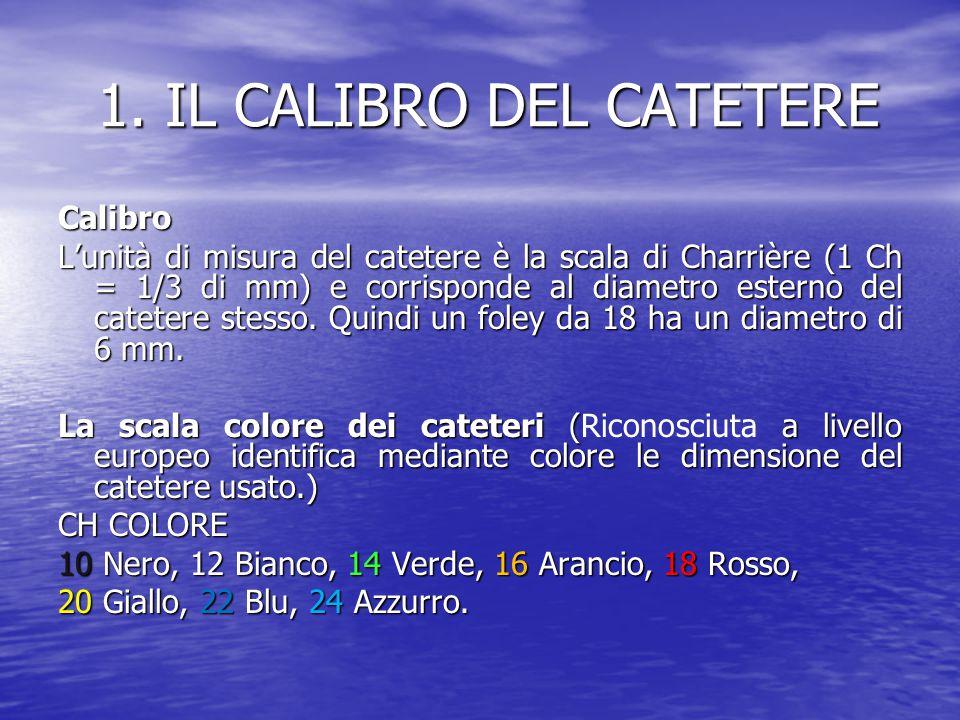 1. IL CALIBRO DEL CATETERE 1. IL CALIBRO DEL CATETERE Calibro L'unità di misura del catetere è la scala di Charrière (1 Ch = 1/3 di mm) e corrisponde