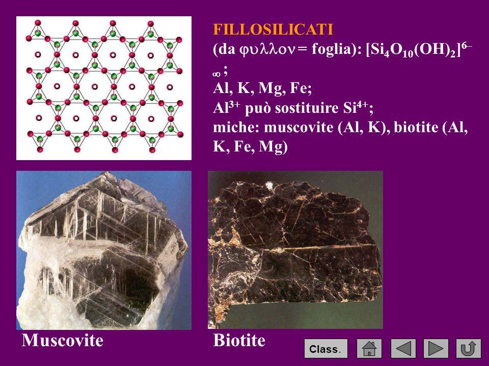 FILLOSILICATI (da  = foglia): [Si 4 O 10 (OH) 2 ] 6–  ; Al, K, Mg, Fe; Al 3+ può sostituire Si 4+ ; miche: muscovite (Al, K), biotite (Al, K, Fe, Mg) MuscoviteBiotite Class.