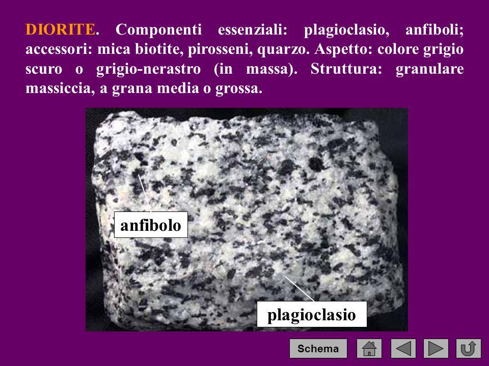 DIORITE.Componenti essenziali: plagioclasio, anfiboli; accessori: mica biotite, pirosseni, quarzo.