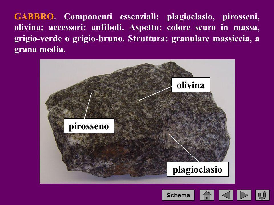 GABBRO.Componenti essenziali: plagioclasio, pirosseni, olivina; accessori: anfiboli.
