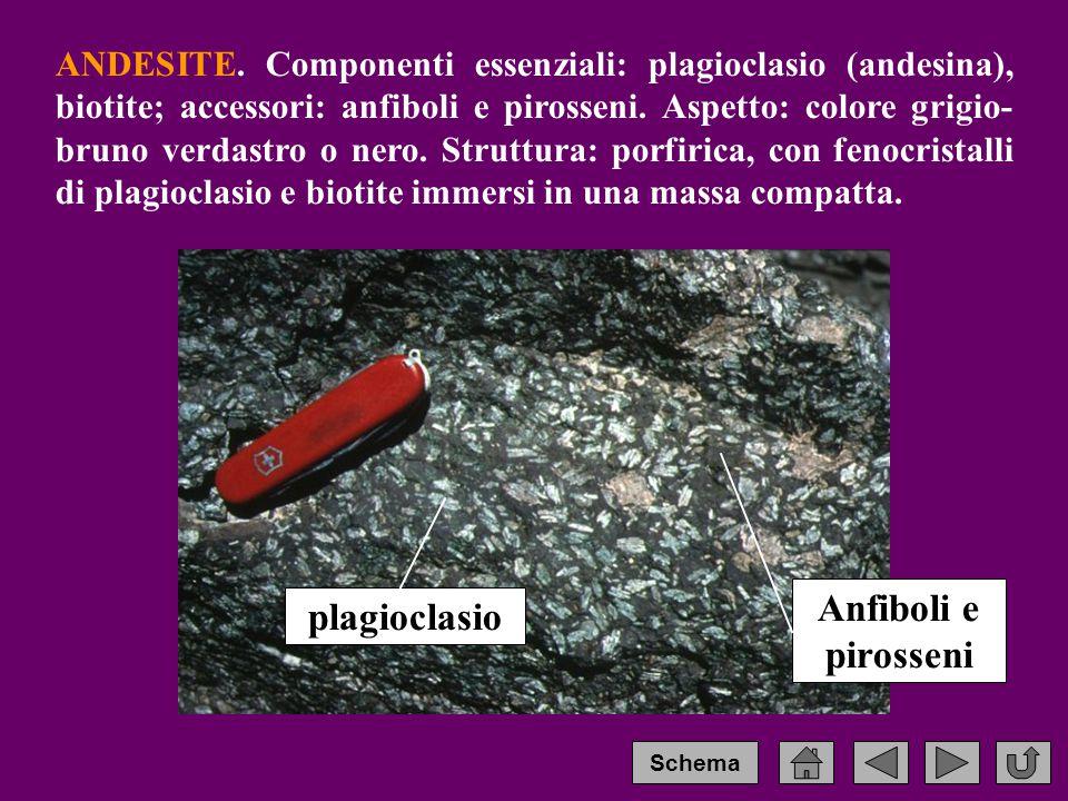 ANDESITE.Componenti essenziali: plagioclasio (andesina), biotite; accessori: anfiboli e pirosseni.