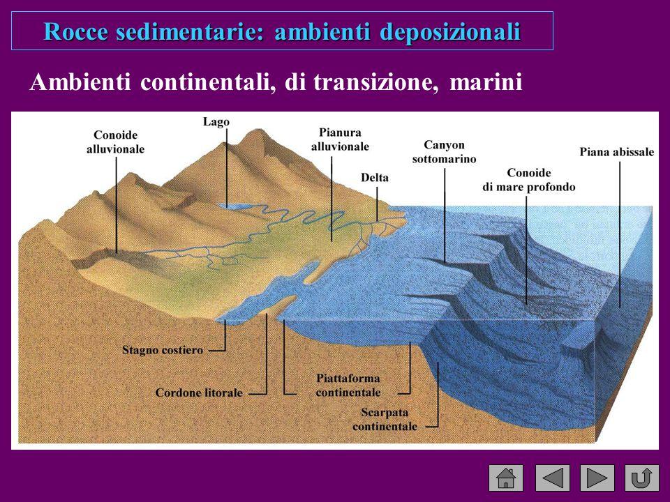 Rocce sedimentarie: ambienti deposizionali Ambienti continentali, di transizione, marini