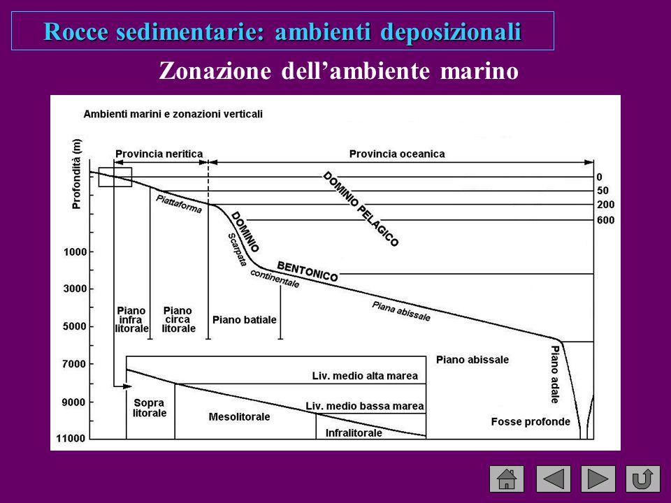 Zonazione dell'ambiente marino Rocce sedimentarie: ambienti deposizionali