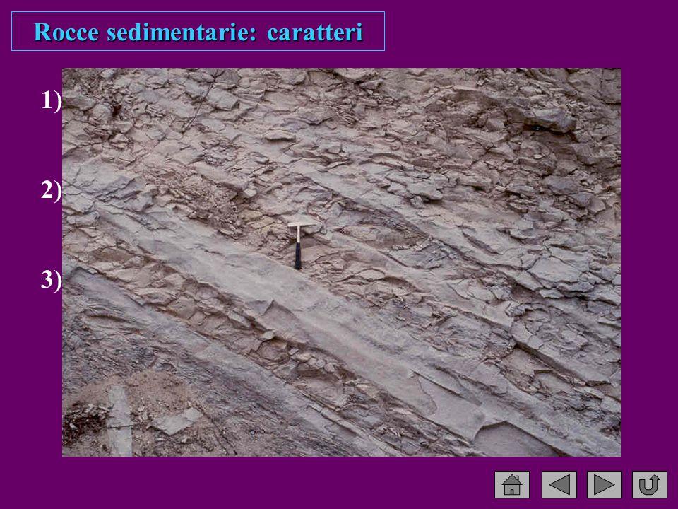 1) Composizione insieme dei costituenti detritici e chimici 2) Tessitura dimensione, forma e disposizione spaziale dei granuli 3) Struttura caratteristiche macroscopiche visibili in affioramento Rocce sedimentarie: caratteri