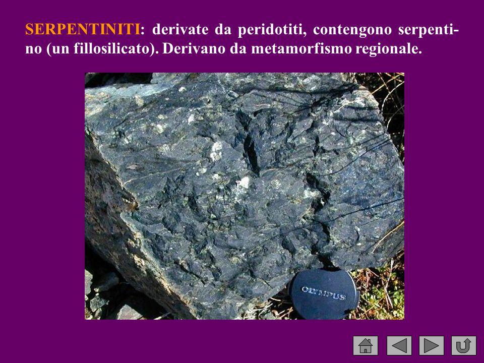 SERPENTINITI: derivate da peridotiti, contengono serpenti- no (un fillosilicato).