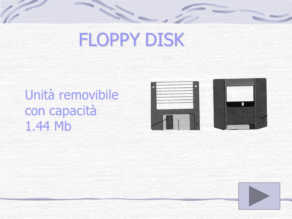 HARD DISK DISCO FISSO con capacità e velocità di lettura e scrittura superiore a quella dei floppy disk.