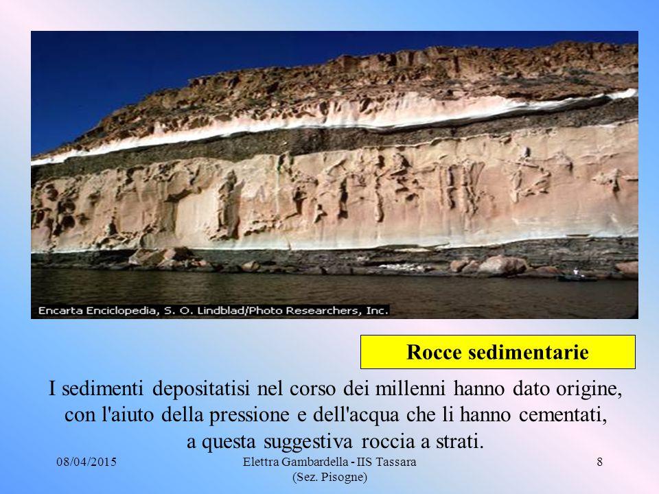Rocce sedimentarie I sedimenti depositatisi nel corso dei millenni hanno dato origine, con l aiuto della pressione e dell acqua che li hanno cementati, a questa suggestiva roccia a strati.