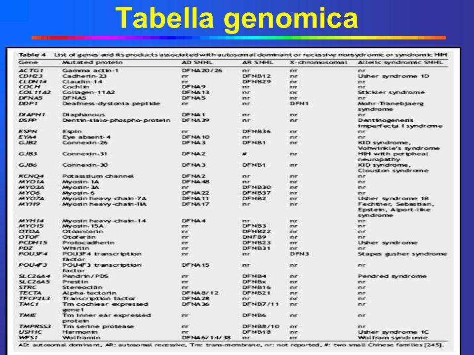 Circa 85 loci correlati a sordità non sindromica Più di 40 geni identificati come correlati a sordità = Notevole eterogeneità genetica